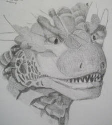 Draco Drawing 1