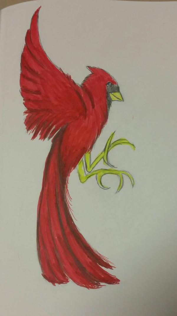 Cardinal  by Wackyjax