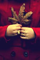 L'automne Triste by AnilTamerYilmazz
