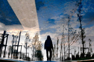 Daily Life Reflections... by AnilTamerYilmazz