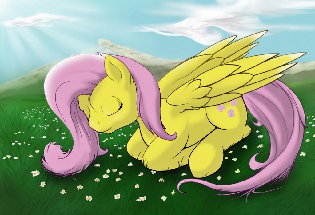 Sleeping Fluttershy by boomythemc