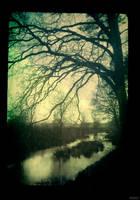 By The River by SCHIMPANSEN