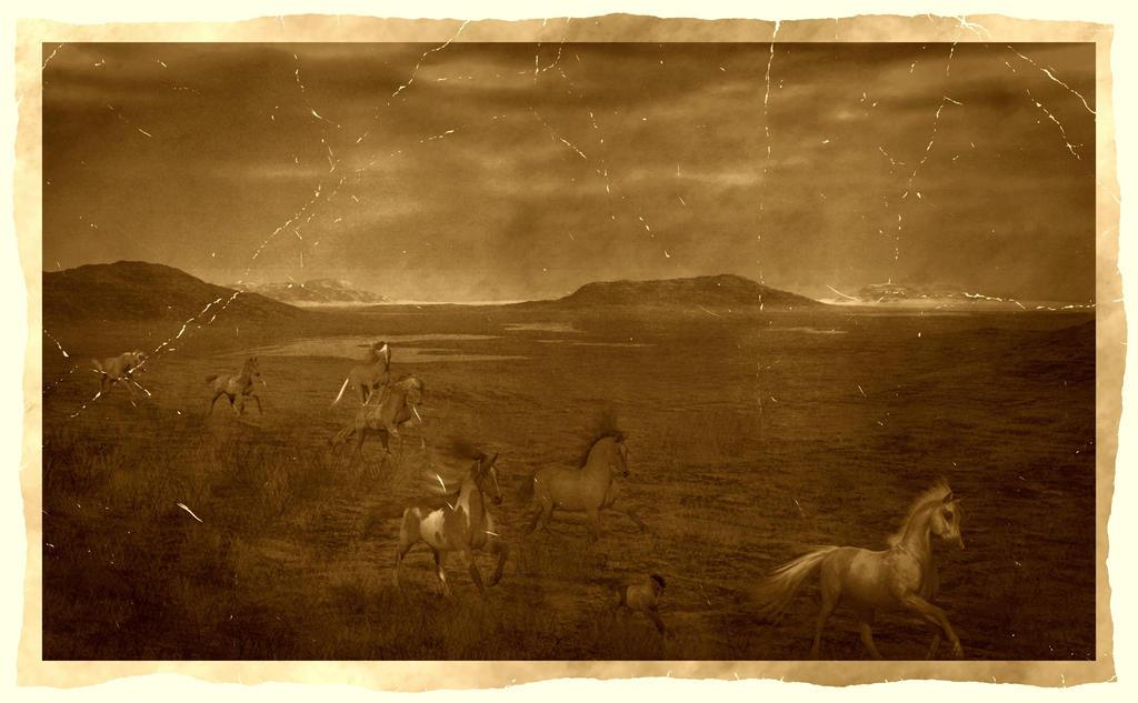 Old Photo - Wild Run by Dakorillon