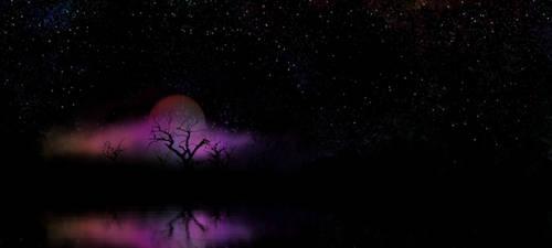Moonrise Magic