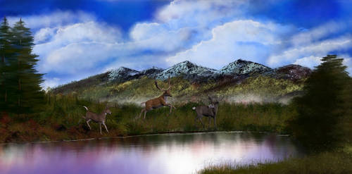 Deer by the Pond
