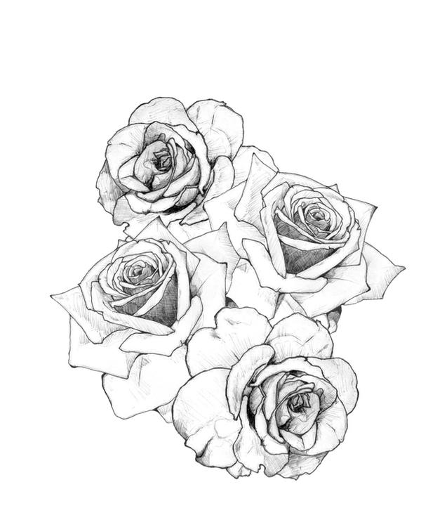 rose tattoo design by jacklumber on deviantart
