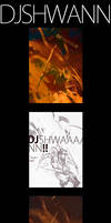 DJSHWANN process