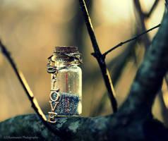 A Bottle Full of Love by photofreak385