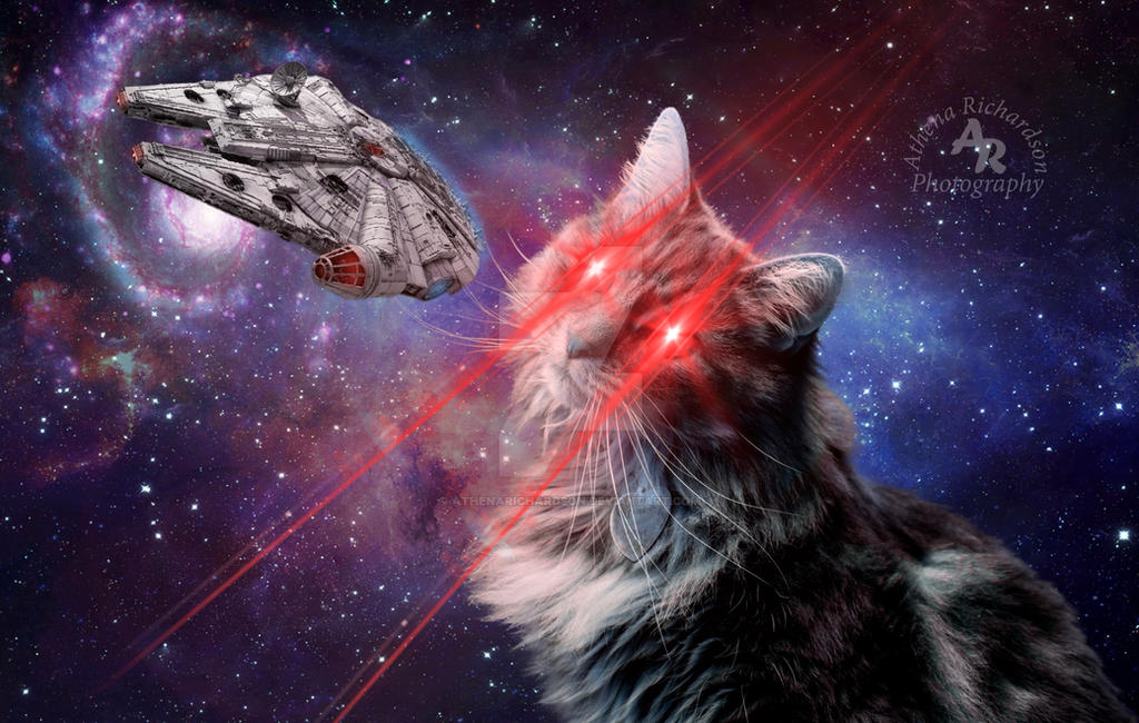 Space Cat wm by AthenaRichardson