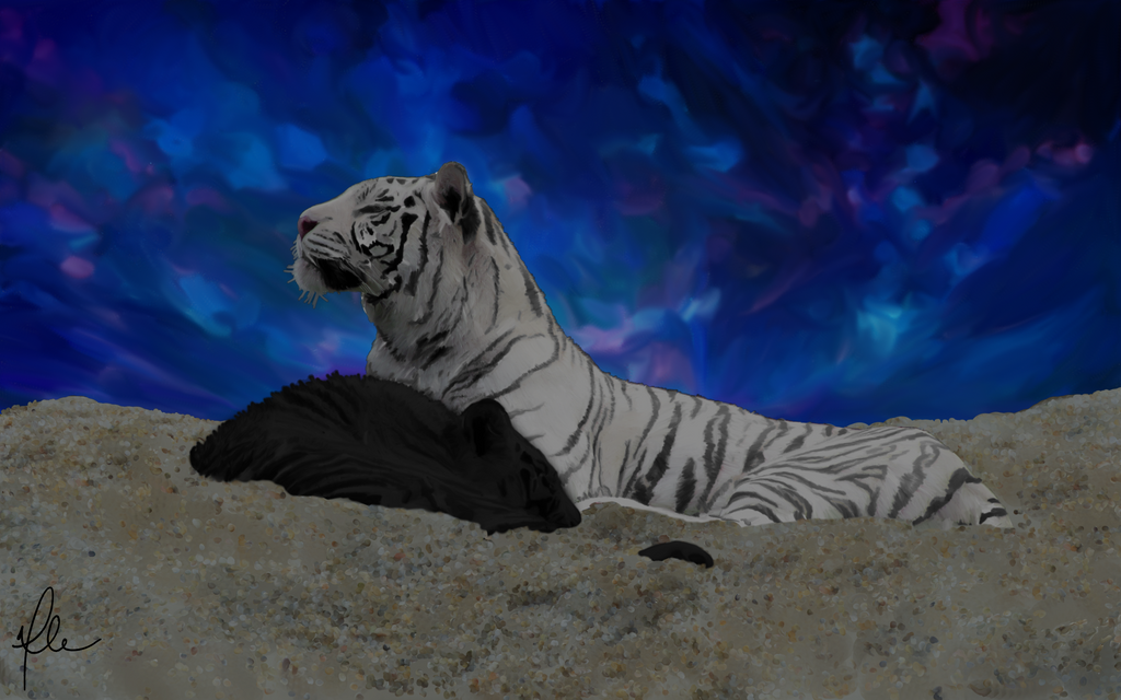 Brothers Under the Stars by arnyia