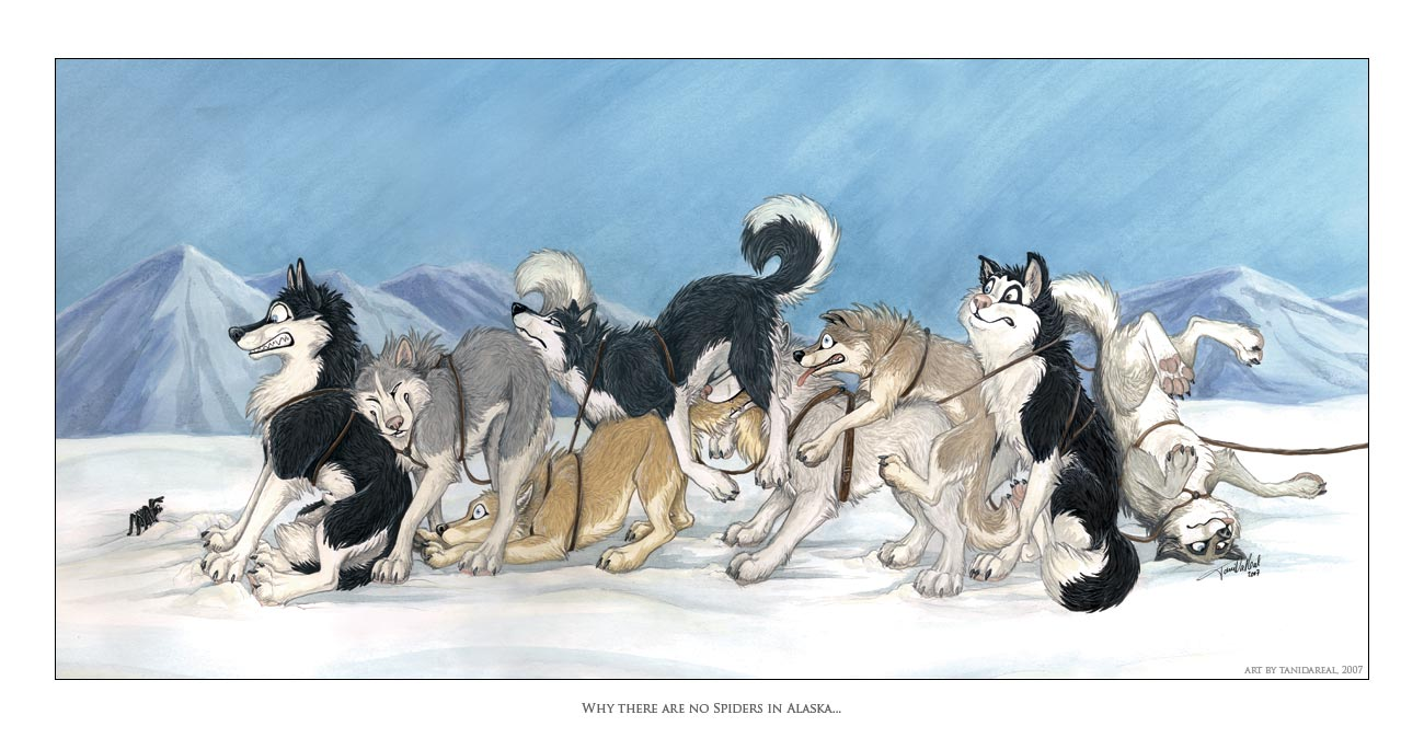 Kreslene Obrazky Zvierat Kreslenie Sk