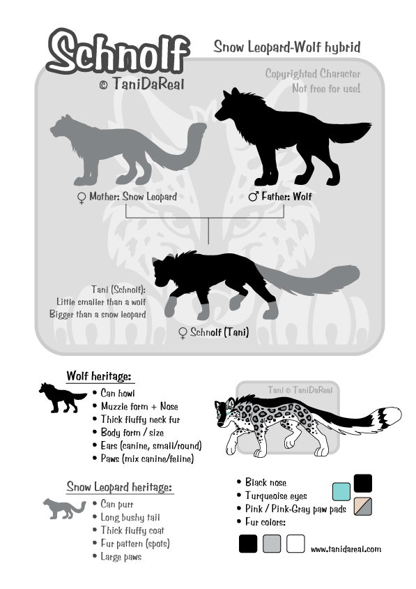 Diagram Of A Snow Wolf - Online Schematic Diagram •