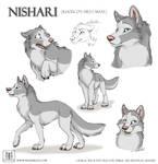 Sketches Nishari