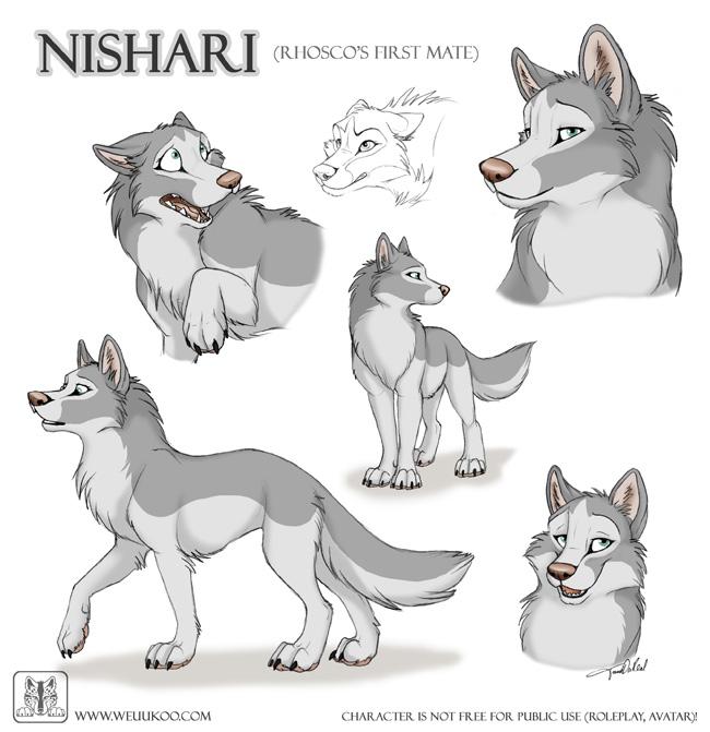 Sketches Nishari by TaniDaReal on DeviantArt