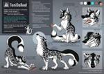 Character sheet TaniDaReal