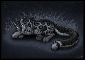 I love the rain by TaniDaReal