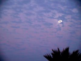 The moon by livingdoll
