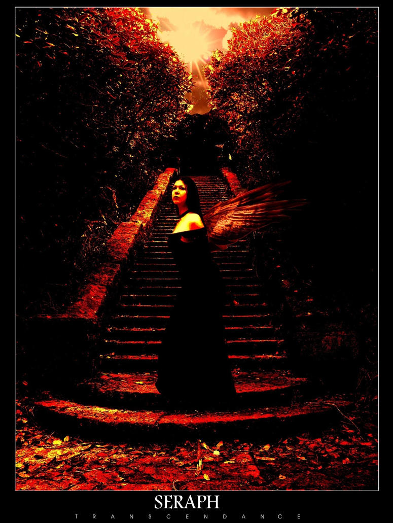 Seraph by transcendance