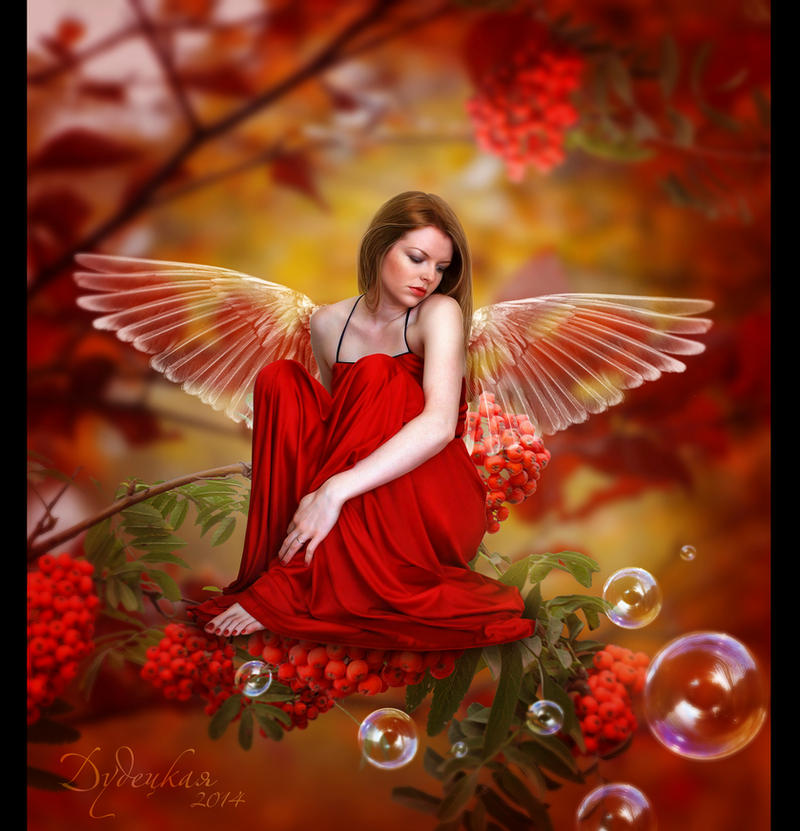Rowan fairy by dudeckaya