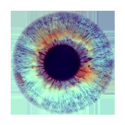Iris 49 by WampiruS