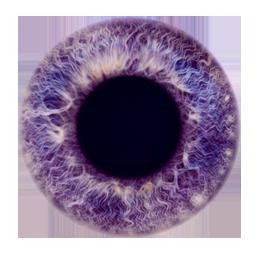 Iris 55 by WampiruS