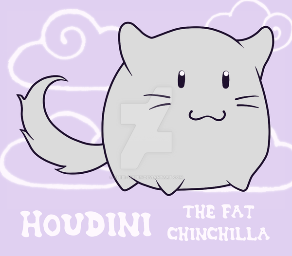 houdini the chinchilla by chibi shibby