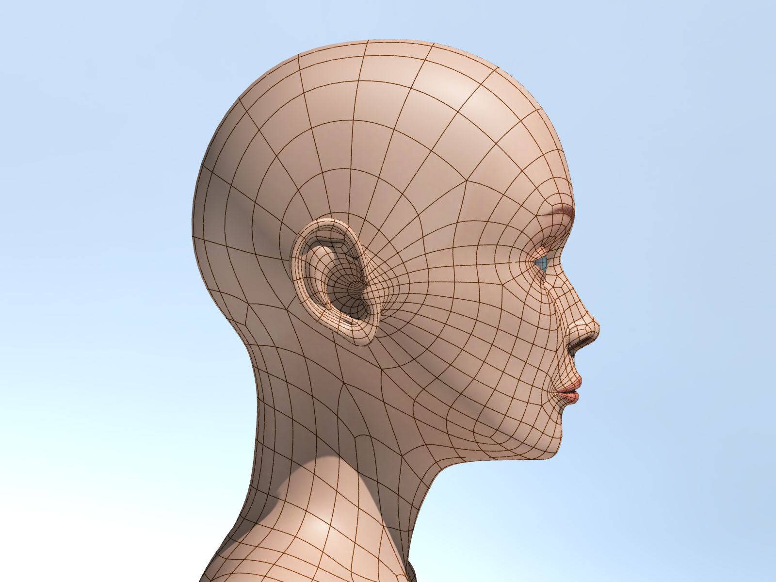 3d Character Wireframe 5 By Ulisses3d On Deviantart