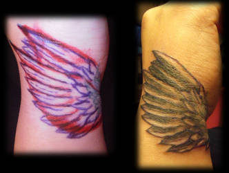 wings by krinakii