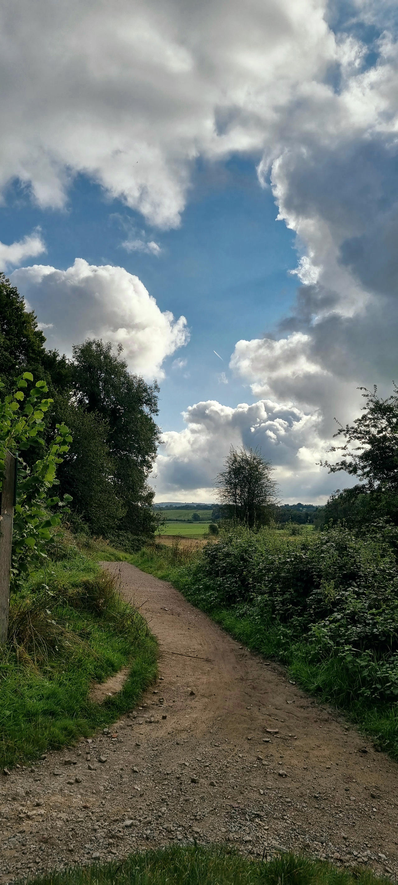Path to the river .