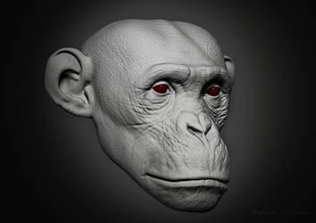 Chimp by Cleytonoliveira