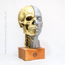 Cranio by Cleytonoliveira