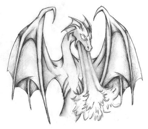 Pencil drawing of a dragon by fox hound bites23
