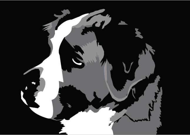 BigTippi's Profile Picture