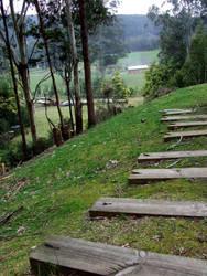 Rustic pathway