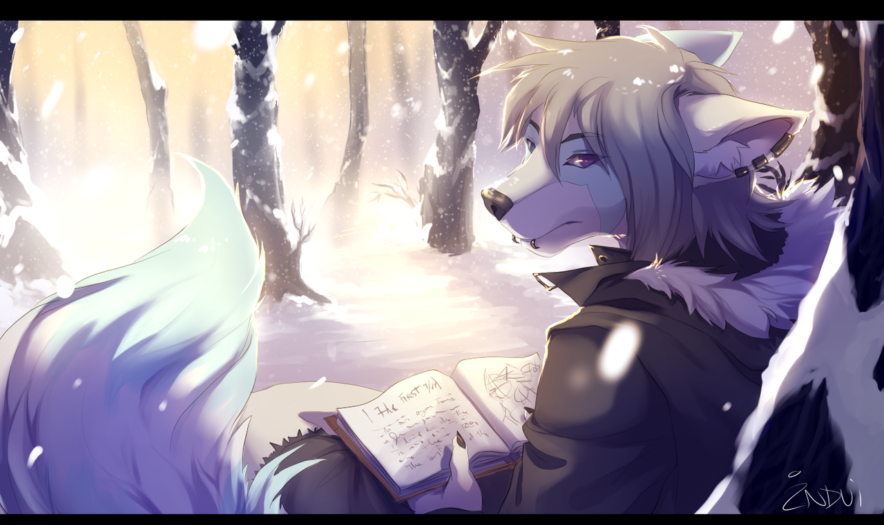 Snowfall by synderen