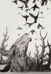Low Roar by synderen