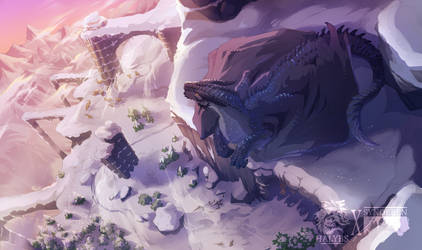 Dragons Eye View