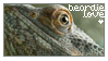 Beardie Love Stamp by xxsymmetryxx