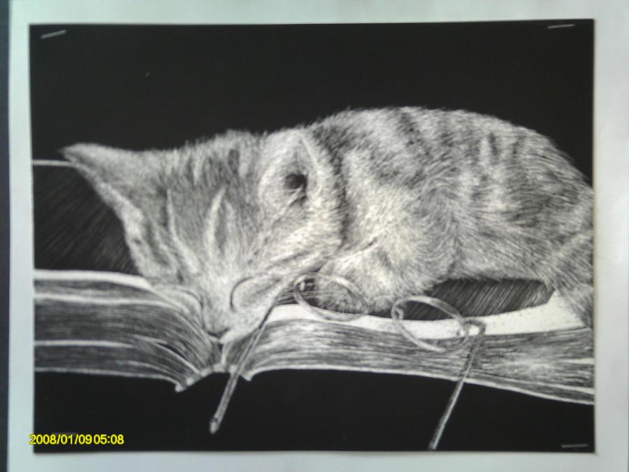Kitty Scratch Art By SirTripsALOT