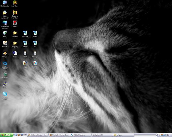 desktop by GosiZZ