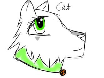 Cat by Sandstorm3510