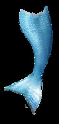 mermaid tail stock 2