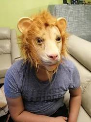 Lion Face Mask Review
