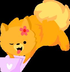 Simply cute - Pom