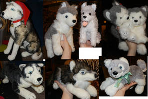 Husky and Wolf Plushies FOR SALE by galianogangster