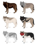 Wolf Adoptables 1 OPEN