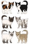 Kitten Adoptables 2 CLOSED