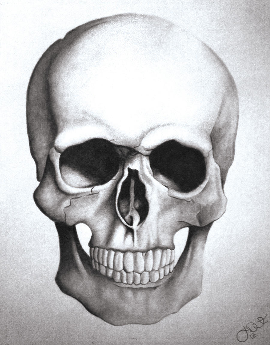 Cool Skull Drawings