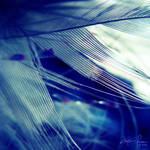 Feeling Blue by Korpinkynsi