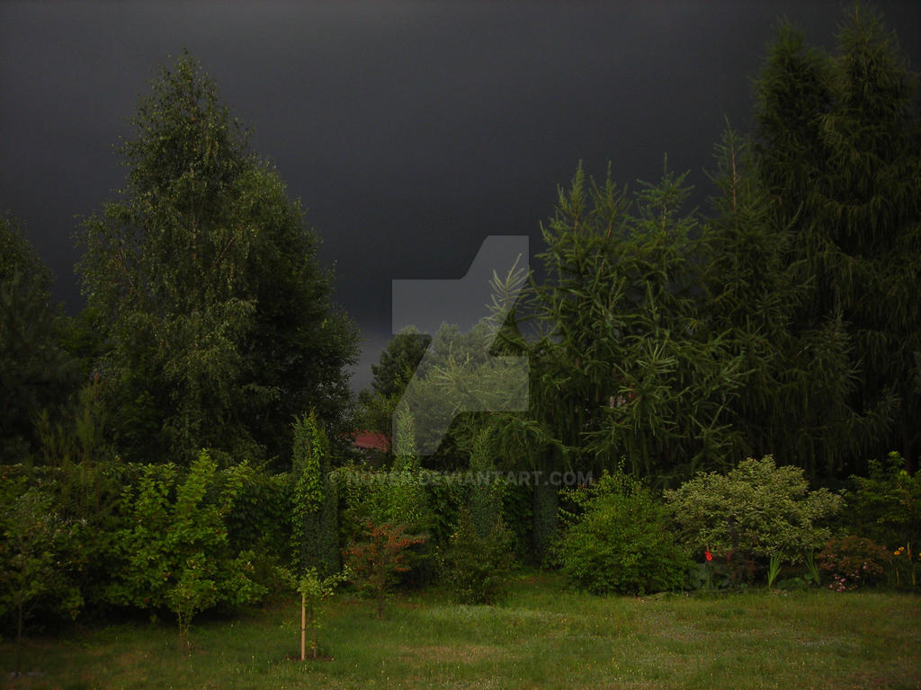 Storm-2008-08-16 by nover